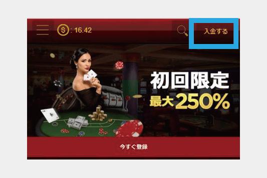 ライブカジノハウス入金画面