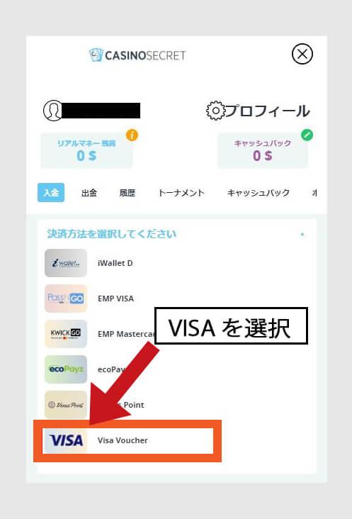 決済方法:VISAを選択