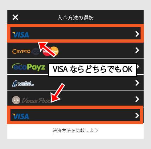 入金方法選択画面:[VISA]をクリック