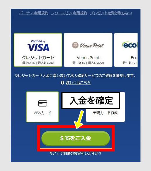 VISAカードの入金を確定
