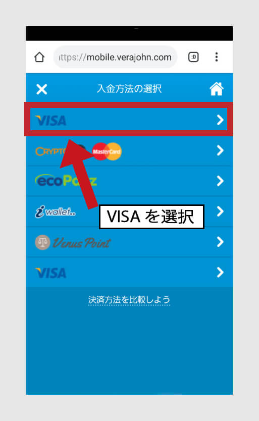 [VISA]をクリック